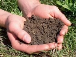 Commercial Soil Preparation, Part 1