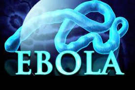 EBOLA: Look at the numbers by the day