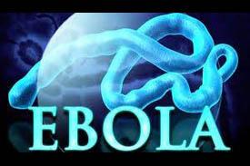 Ebola:  Updates 10/16/14
